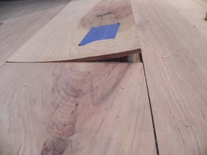 delamination - dry cupping wood flooring