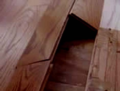 Wood flooring problems moisture related floor central for My hardwood floors are buckling